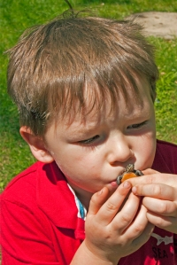 Boy Kissing Baby Painted Turtle, Chrysemys picta