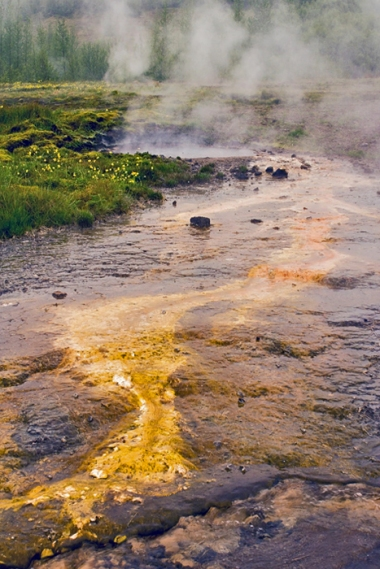 Algal Runoff and Hot Spring, Haukadalur Geothermal Area, Golden
