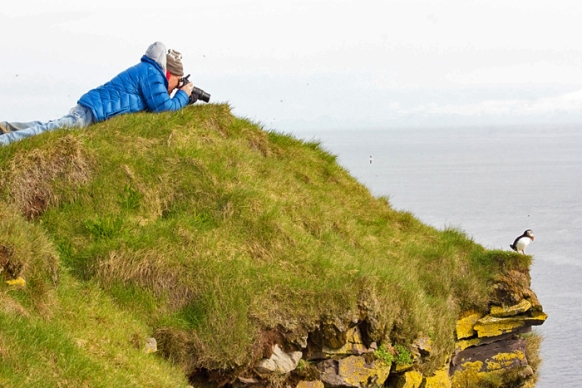 Photographing Puffins on Latrabjarg Cliffs, Westfjords, Iceland
